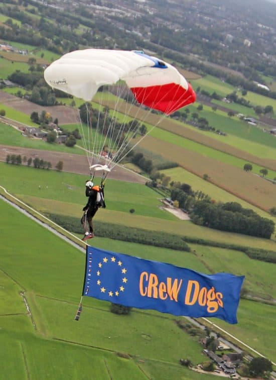 crEUw dogs banner 02