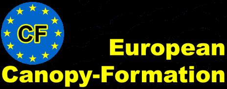 ECF Logo Header